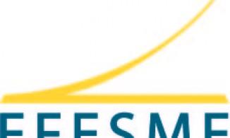 European Federation for Elevator Small and Medium-sized Enterprises
